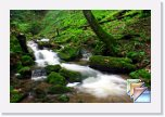 Spring * Spring Forest Waterfall Nature Pictures * (104 Slides)