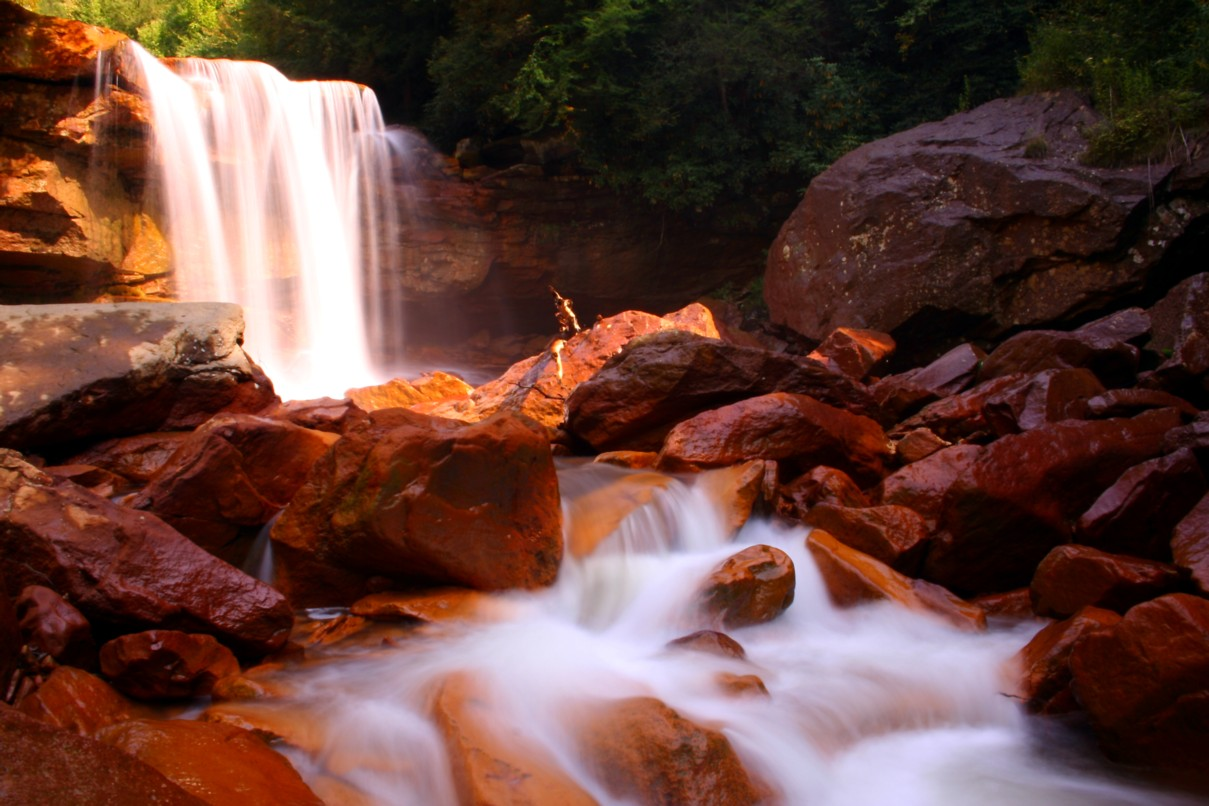 http://www.forestwaterfalls.com/images/Douglas-Waterfalls.jpg